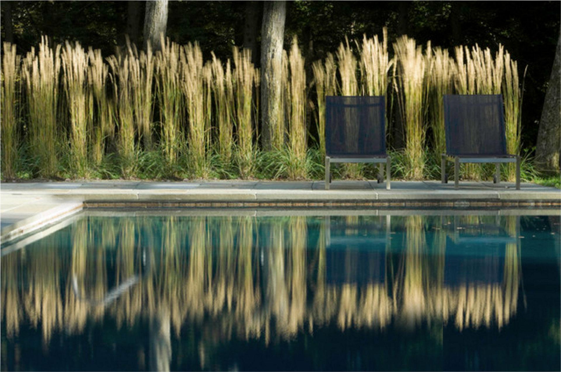 FENG SHUI - Energie im fluss | beratung - hamburg - schlafzimmer - kueche - arbeitszimmer - eingang - garten - brunnen - farben - elemente - einrichten - ruhe - gelassenheit - feng shui ausbildung | 01 Pool